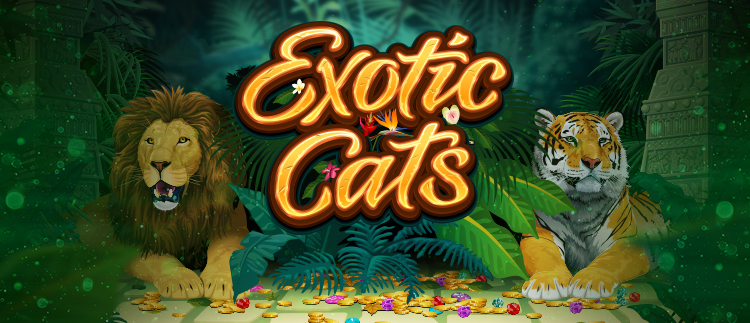Exotic Cats Online Slot Game Gaming Club Online Casino Mobile