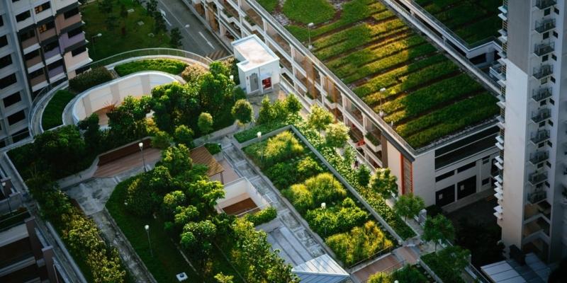 urban gardens can help reduce city air pollution