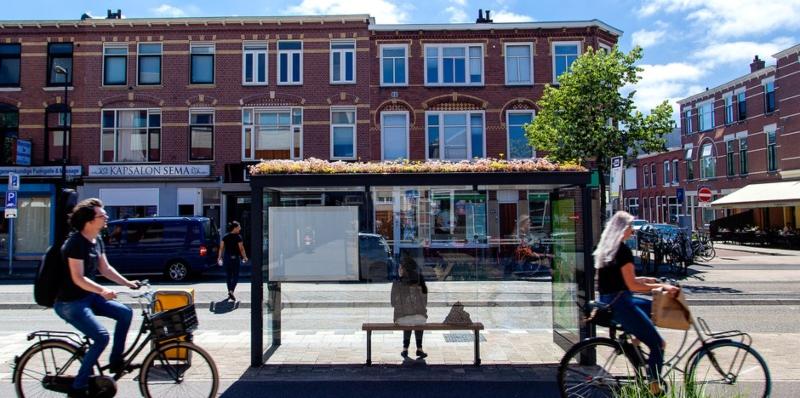Parada de autobús con 'techo ecológico, en Utrecht, Holanda