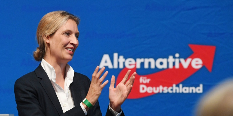AfD leader Alice Weidel applauding 2017 election results