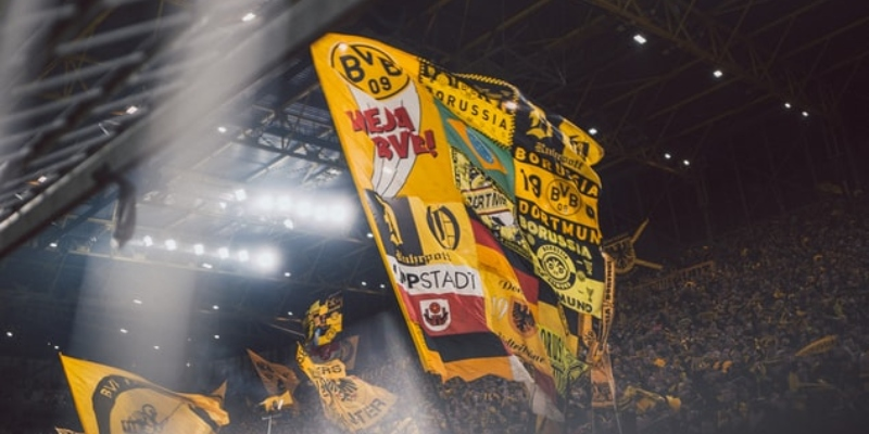 BVB Flags