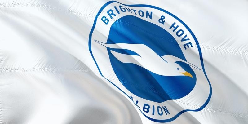 Brighton FC Flag