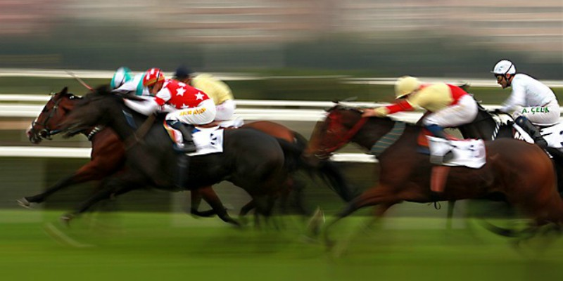 Discover virtual sports horse racing for potential chances to win