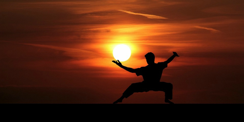 martial arts silhouette sunset