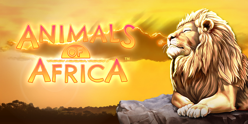 Animals of Africa Online Slot Logo